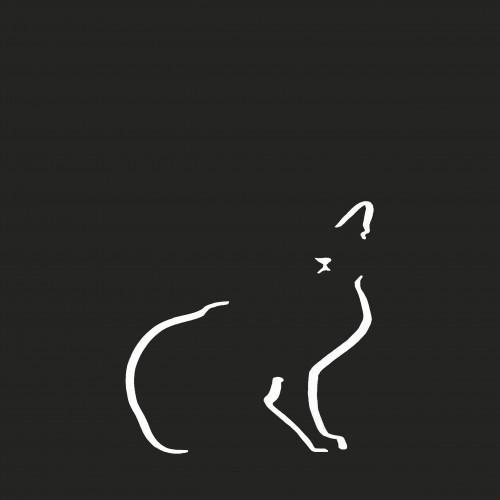 Ilustración de gato doméstico sin marco color Negro