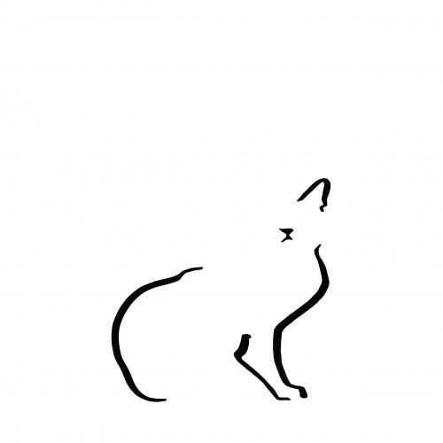 Ilustración de gato doméstico sin marco color Blanco