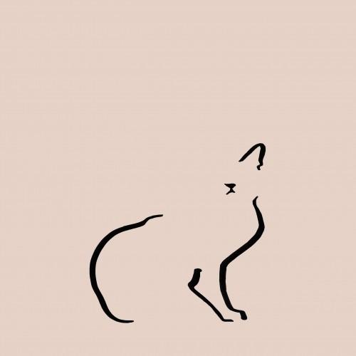 Ilustración de gato doméstico sin marco color Rosa