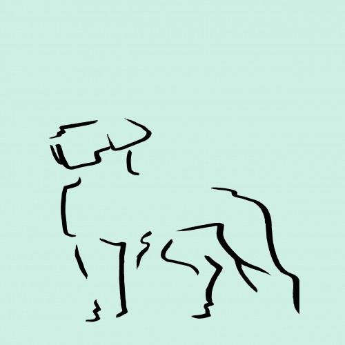 Ilustración Dogo sin marco color Mint