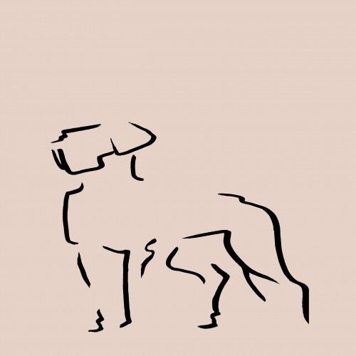 Ilustración de Dogo A4 sin marco color Rosa