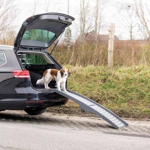 Rampa de acceso de perros para el coche color Gris