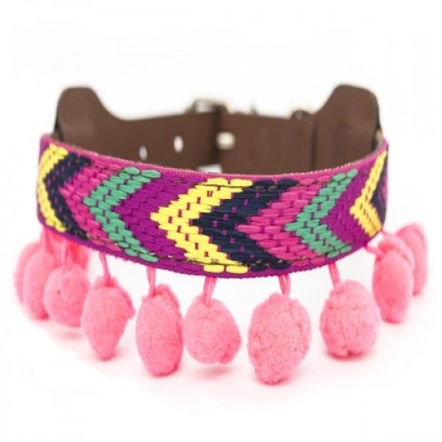 Collar Ikal para perros color Multicolor