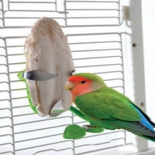 Soporte con forma de hoja para aves color Verde