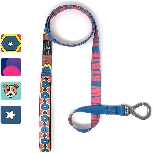 Correa Wonder Doggy para perros color Multicolor