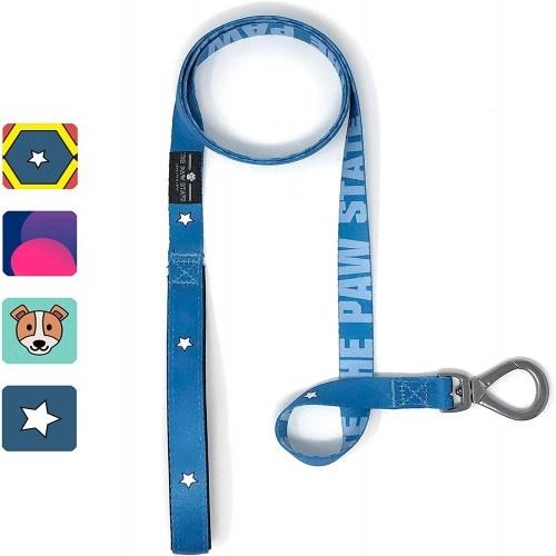 Correa Capi-Dog para perros color Multicolor