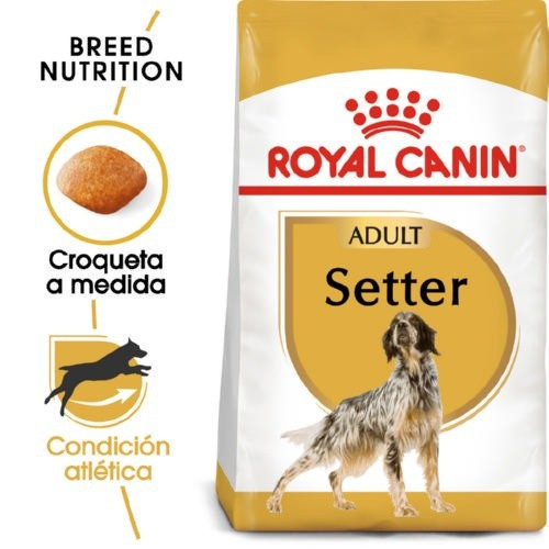 Royal Canin Setter Adult pienso seco para perro adulto