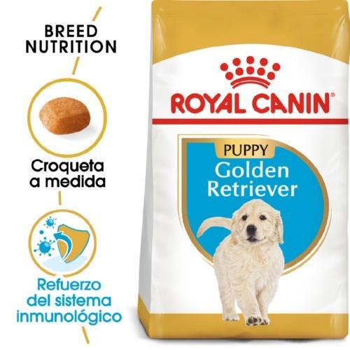 Royal Canin Golden Retriever Puppy pienso seco para cachorros