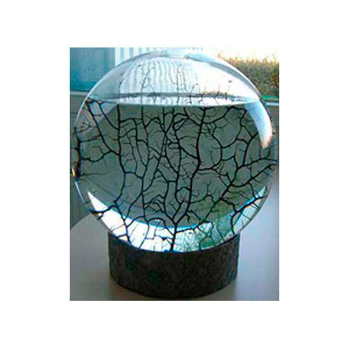 Ecosfera Super Gigante de acrílico IXXXSLA