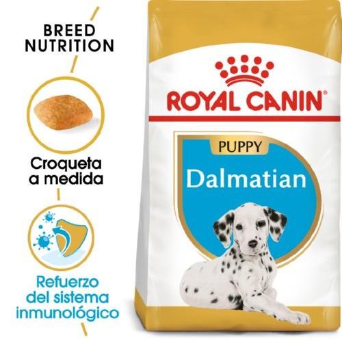 Royal Canin Dalmatian Puppy pienso seco para cachorros dálmata
