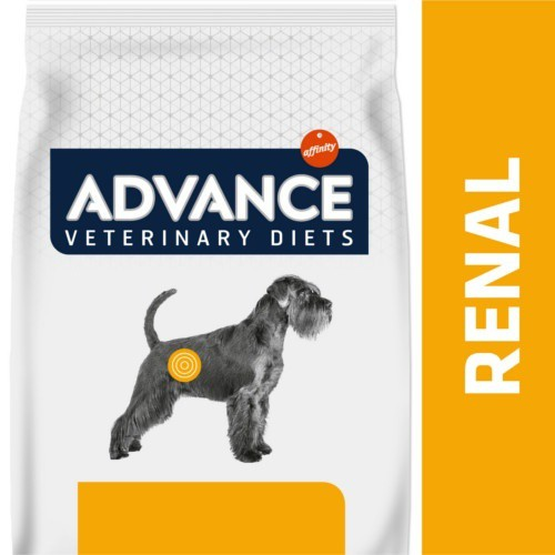 Advance Renal Failure Canine