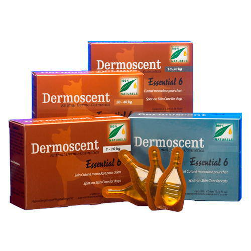 Dermoscent Essential 6 spot-on complete skin care for cats