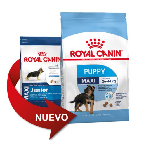 royal canin maxi puppy tiendanimal. Black Bedroom Furniture Sets. Home Design Ideas
