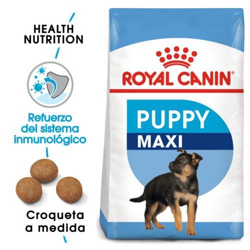Royal Canin Maxi Puppy pienso para cachorro