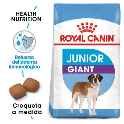 royal canin giant junior tiendanimal. Black Bedroom Furniture Sets. Home Design Ideas