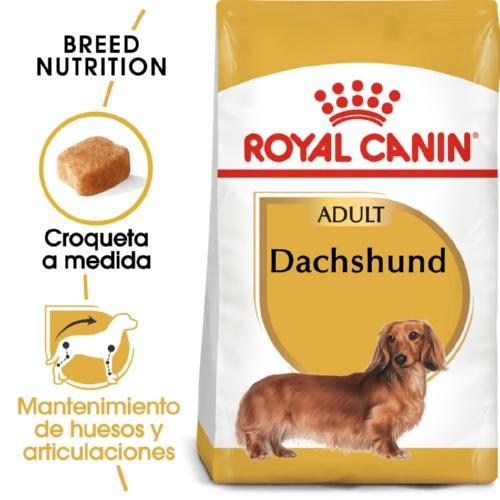 Royal Canin Dachshund Adult pienso seco para perro adulto teckel