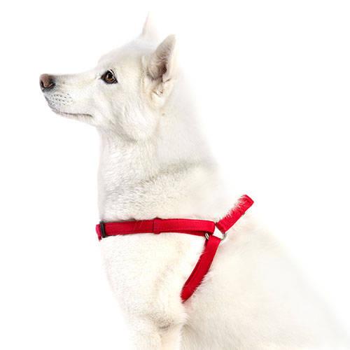 Technical Pet Arnés acolchado para perros Soft Rojo