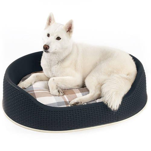 Cama de plástico para perros y gatos Curver Plastic Decor Negro