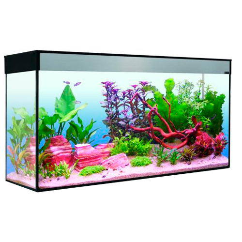 Acuario moderno Emotions T5 80 Kit completo