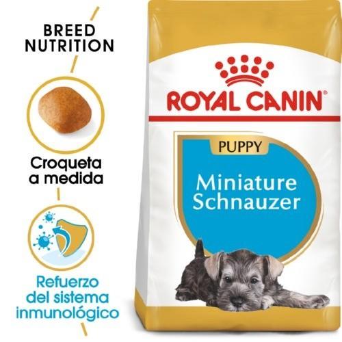 Royal Canin Miniature Schnauzer Puppy pienso seco para cachorros