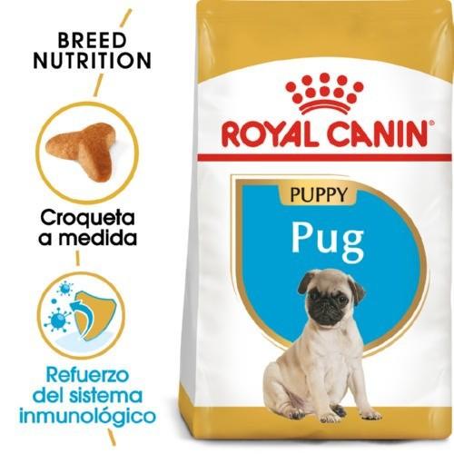 Royal Canin Pug Puppy pienso seco para cachorro carlino