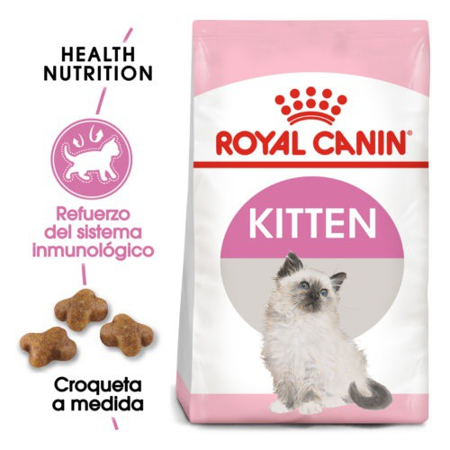 Royal Canin Kitten pienso para gatitos