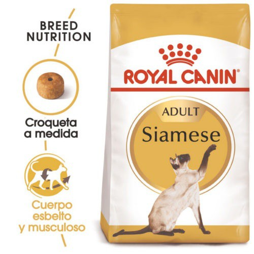 Royal Canin Siamese pienso para gato siamés adulto