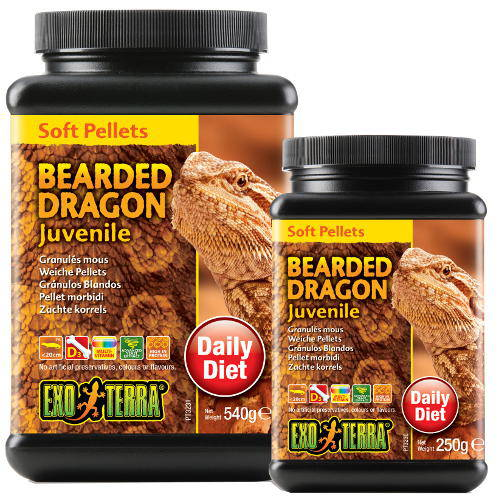 EXO TERRA young bearded dragons food