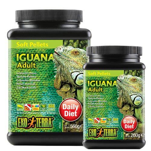 Alimento Iguana Adulta de EXO TERRA