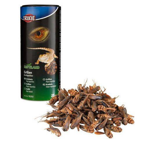 Grillos deshidratados para reptiles y erizos