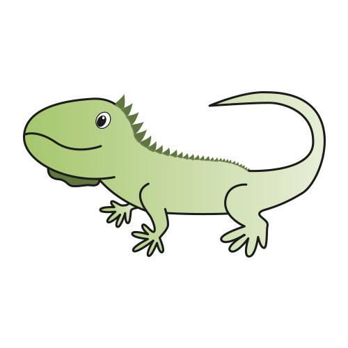 Pack mantenimiento mensual iguanas adultas
