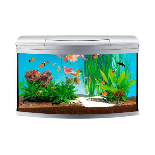 Tetra AquaArt Evolution Line 130 L aquarium complete kit