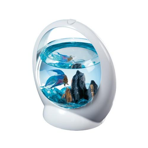 Acuario de cristal Betta Ring de Tetra