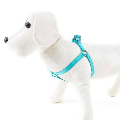 Arnés para perros de nylon Linea Basic Color Aguamarina