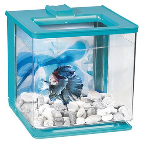 Kit betta aquarium auto cleaning Marina Betta EZ Care blue