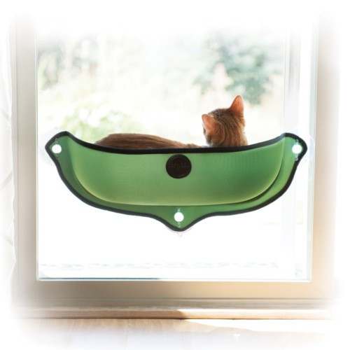 Bed to window with suction cups for cats