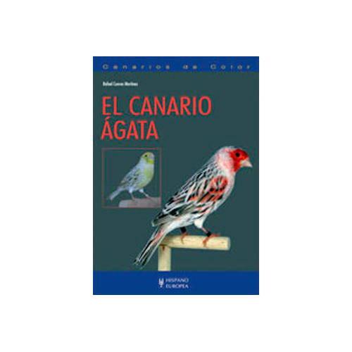 El canario agata (Canarios de color)