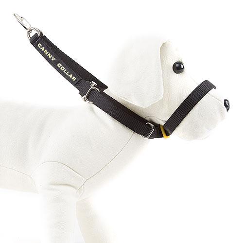Canny Collar de manejo para perros rebeldes Color Negro
