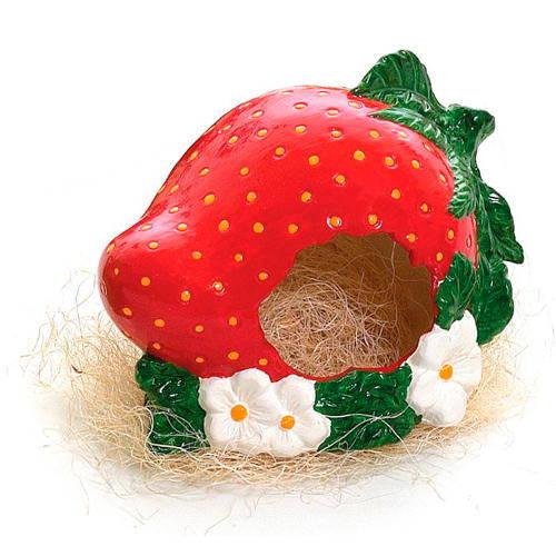 Casas nido de cerámica decorativas Tutti fruti para hámster