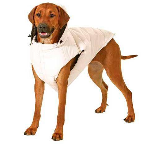 Chaleco reversible para perro