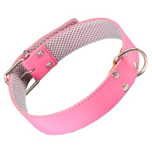 Collar de cuero rosa con forro interior para perros