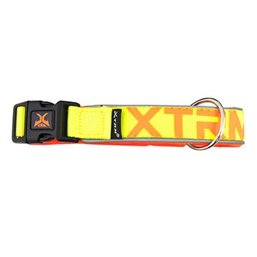 Collar de nylon con reflectante X-TRM Neon Flash limón