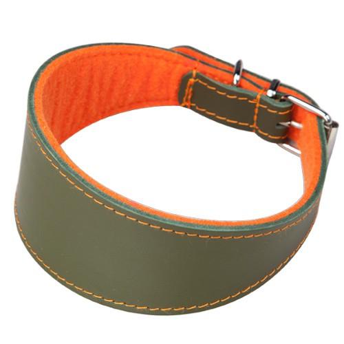 Collar para galgos con forro Superfelt verde y naranja