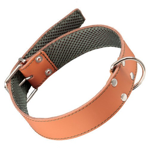 Collar para perro de cuero cosido ancho Color Natural