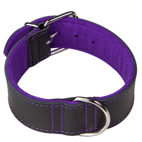 Collar para perros con forro Superfelt Choppers negro y púrpura