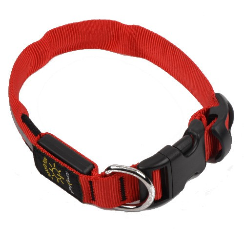Collar LED para perros NiteDawg rojo
