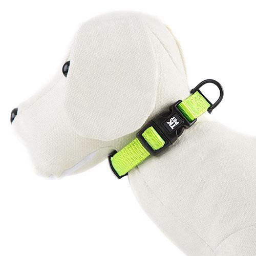 Collar para perros TK-Pet Neo Classic verde lima de nylon y neopreno