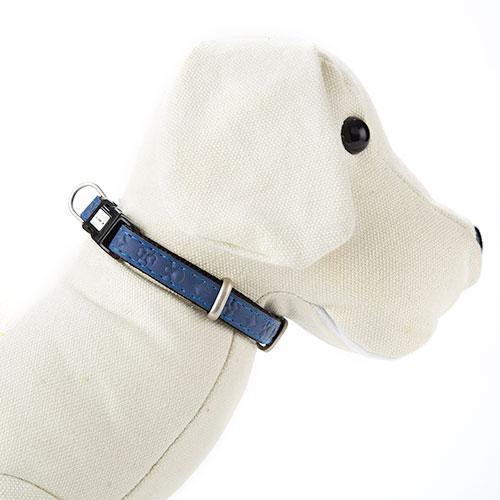 Collar para perros MacLeather Star Azul