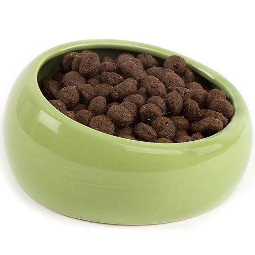 Comederos ergonomicos de ceramica para mascotas Color Verde