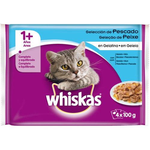 Alimento Para Gatitos Paseo Baby
